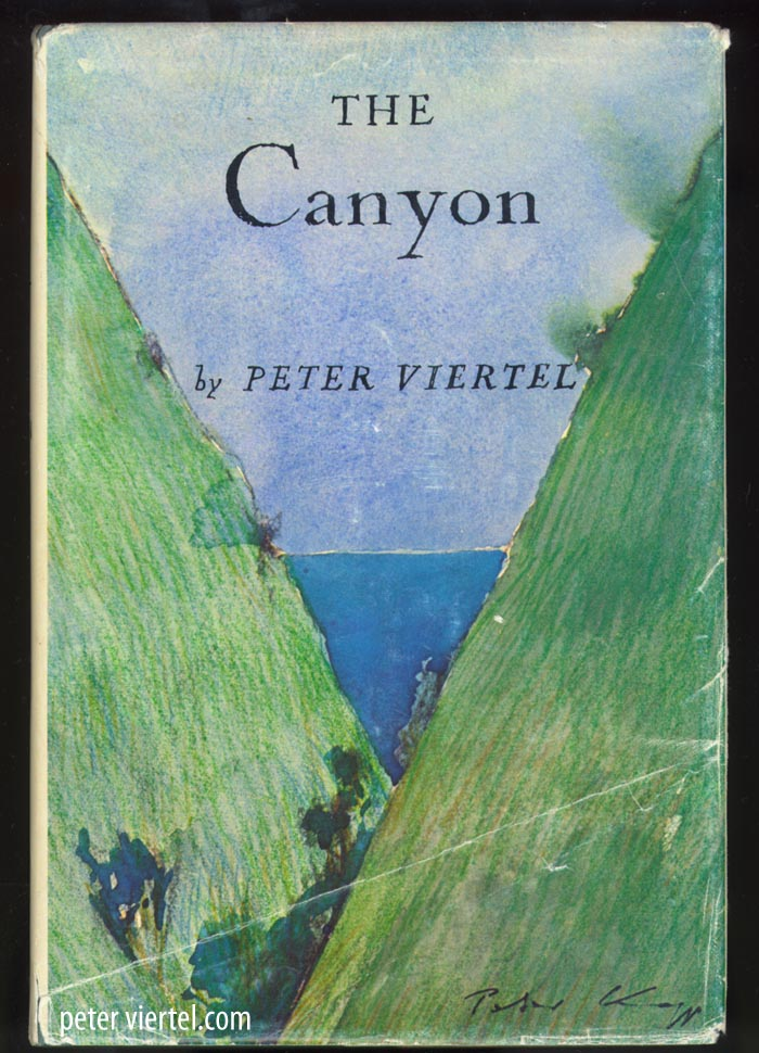 The Canyon by Peter Viertel - Cover